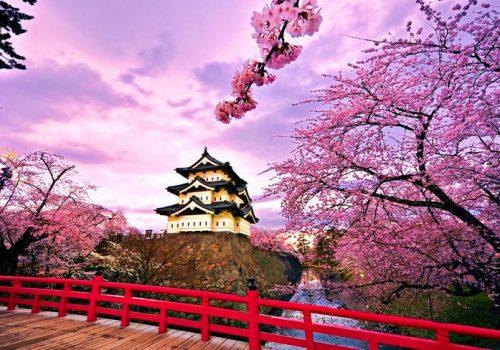 10-Tips-Belajar-Bahasa-Jepang-agar-Cepat-Mahir
